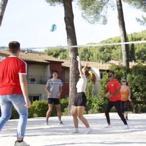 animation sport volley
